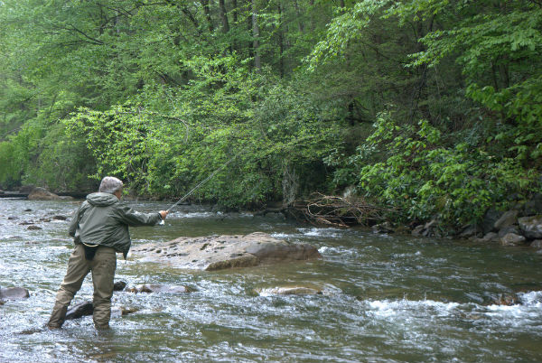 Welcome! - Virginia Fly Fishing & Wine Festival : Virginia Fly
